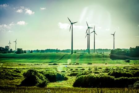 Windenergie in Heidelberg? @ Grüner Baum | Heidelberg | Baden-Württemberg | Deutschland